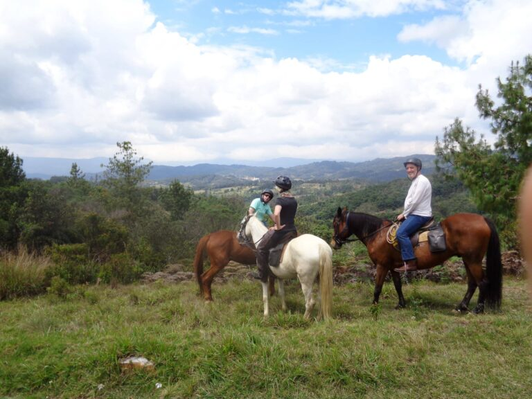 Colombian_creole_horse_riding_Ridingcolombia