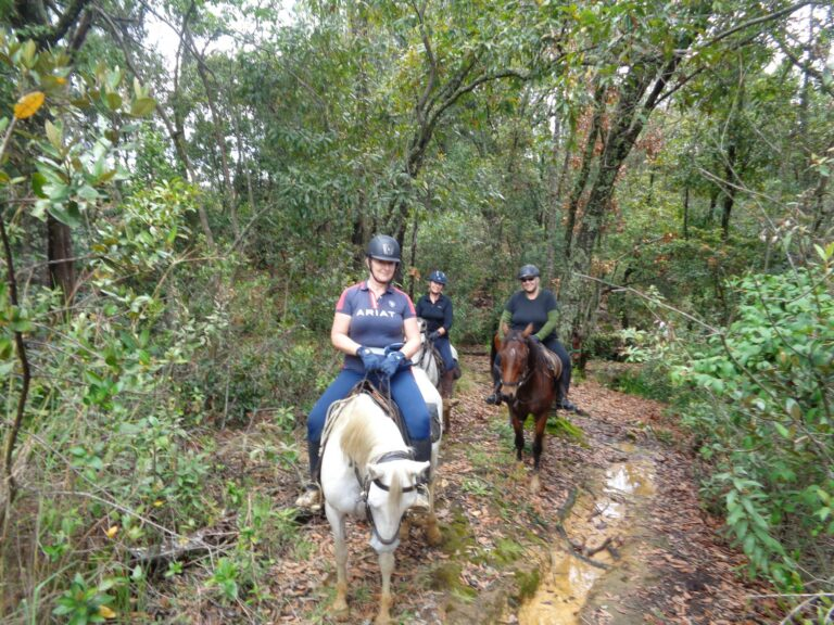 Horseback_riding_holidays_Ridingcolombia