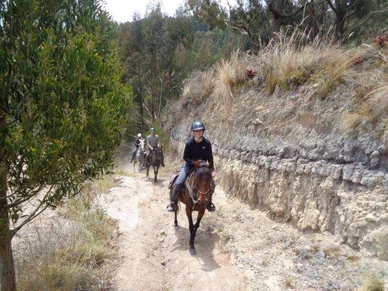 horse_riding-Tours_Ridingcolombia